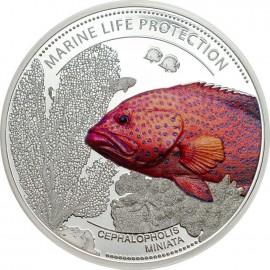 1 oz Palau marine life