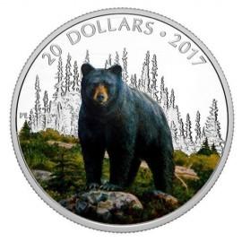 1 Unze Silber Canada 2016 Polar Bear