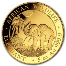 5 Unzen oz Gold Somalia Elefant 2017 PP (inkl. Holzbox)