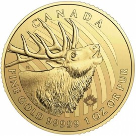 1 oz call of the wild Gold elk
