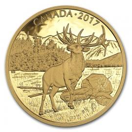 350 Dollar Gold Rothirsch Wildtiere Canada  2017 PP