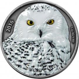 1 Unze Silber Snowy Owl Burkina Faso  1000 Francs 2016 PP