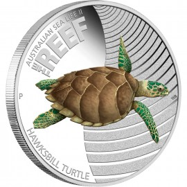 1/2 oz Sea LifeII Turtle