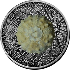 1 Unze oz Silber 1000 Francs 2017 Burkina Faso Echinoidea World of Evolution Antique Finish