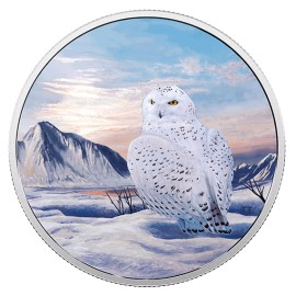 2 Unzen Silber Canada Snow Owl Artic Animals Glow in the dark