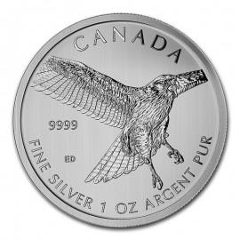 1 Unze Silber Birds of Prey...
