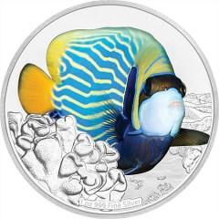 1 Unze oz Silber Reef Fish Collection Angefish  Kaiserfisch Niue Box 2018