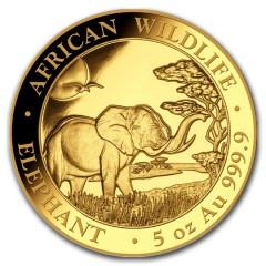 5 Unzen oz Gold Somalia Elefant 2019 PP (inkl. Holzbox)