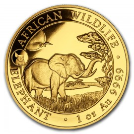 1 oz Somalia Elefant Gold 2019 Privy Pig