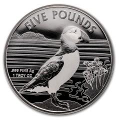 1 oz  2018 Silver