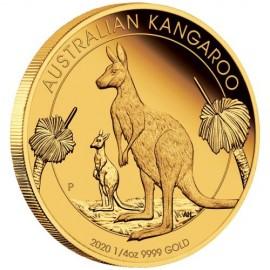 1/4 oz  Gold Känguru Kangaroo 2020 PP