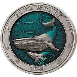 3 Unzen Silber  Dolphin  Delfin Barbados 2019 AF coloured