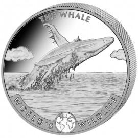 1 Unze Silber  Blauwal Kongo 2020