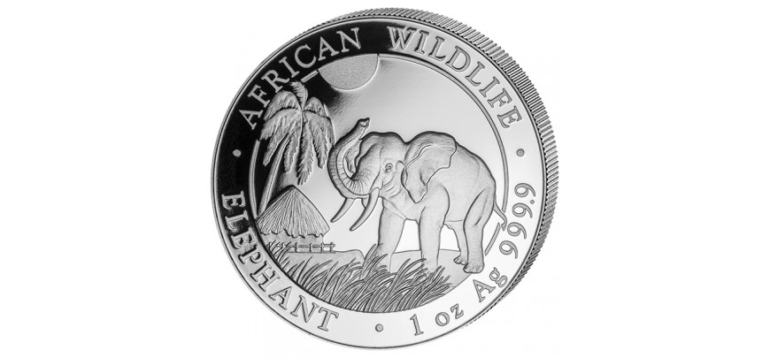 Somalia Elefant Elephant Wildlife Serie Silber Größe  1  5  10  Unze  1 kg